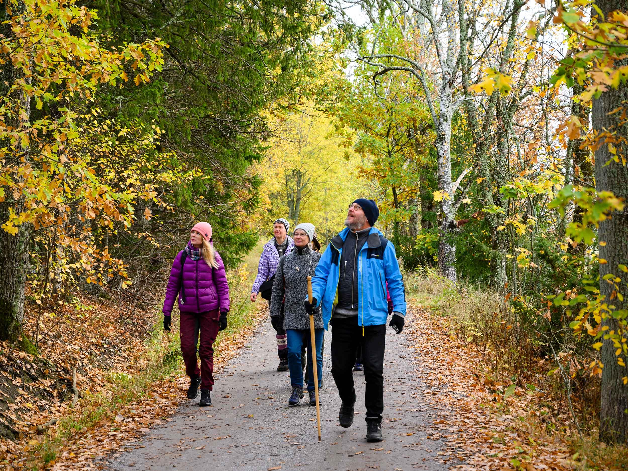 Aaro Söderlund, Nina Söderlund, Annastiina Papinaho ja Mia Aitokari kehittävät uusia vaellusreittejä ja palveluja niiden varrelle.